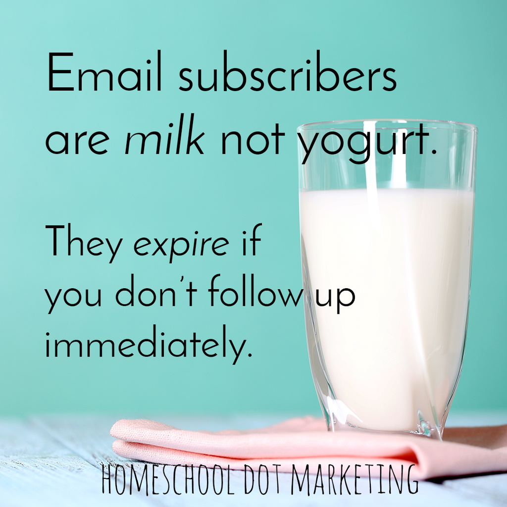 Email subscribers are milk not yogurt.  They expire if you don't follow up  immediately.